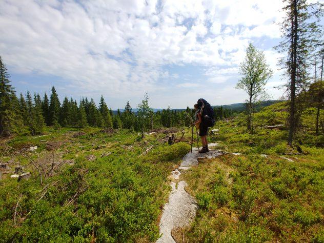 Reiseeinfachundlebe Unterwegs auf Abenteuerwegen