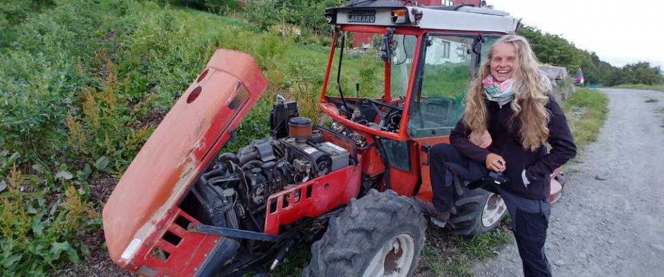 3 Wochen Farmarbeit am Hardangerfjord