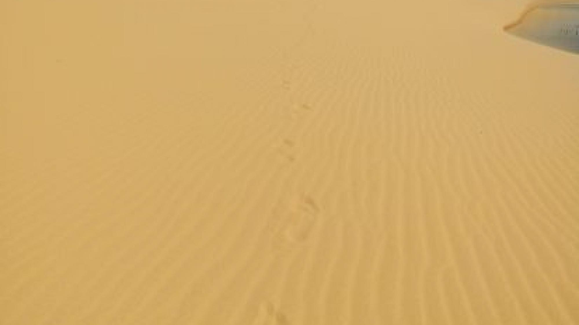 In der Wüste Vietnams